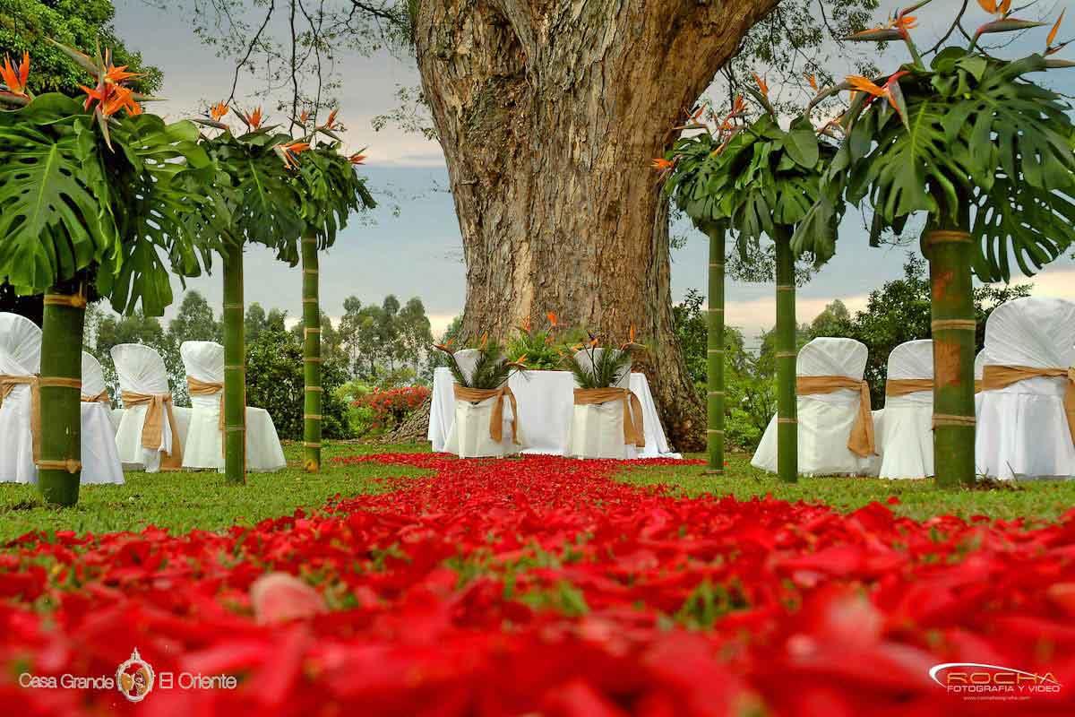 Bodas en cali como decorar tu ceremonia al aire libre for Decoracion de pared para novios