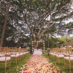 bodas y eventos en cali, organizacion de bodas en cali y matrimonios campestres, entremanteles0065