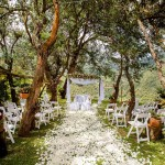 organizacion de bodas, decoracion de bodas, matrimonios, organizacion matrimonios, bodas campestres, entremanteles 1